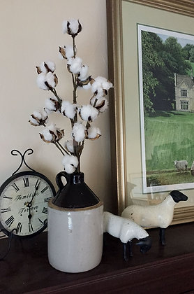 Two Cotton Stems - 16 Heads per Stem
