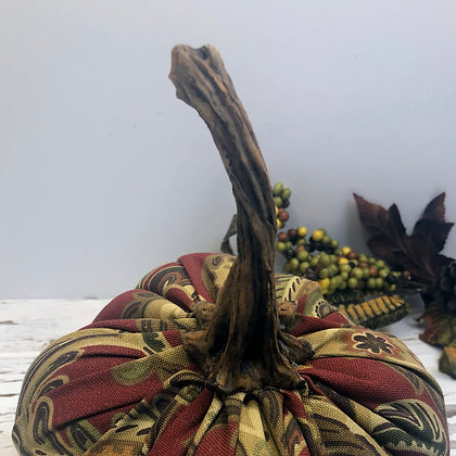 Large Pumpkin Stems