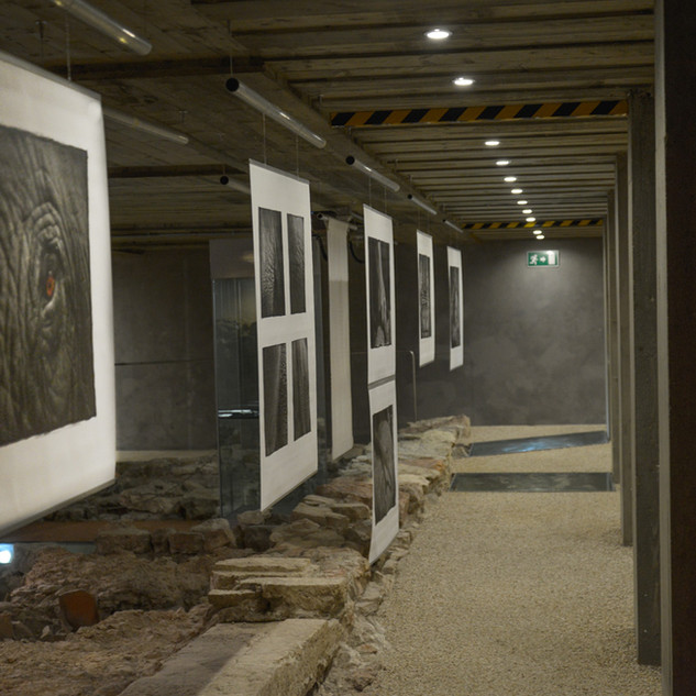 Exhibit along buried Roman road in Trento, Italy