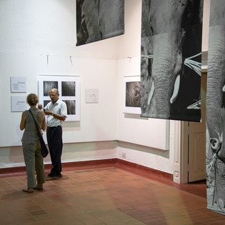 Solo Show in Fort Kochi, India