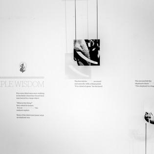 Telluride Exhibit