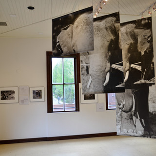 Exhibit in Ah Haa Gallery, Telluride, USA