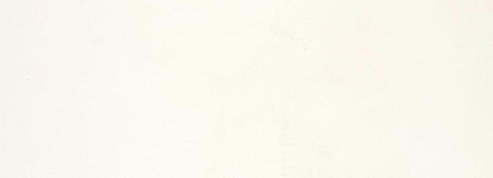 Pure White BQ5000