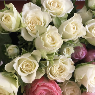Flower Party Roses