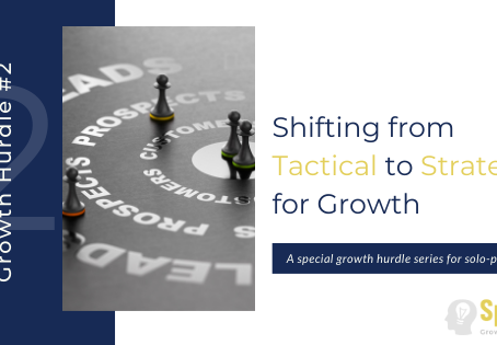 Growth Hurdle #2 – Shifting from Tactical to Strategic for Growth