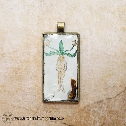 Real Mandrake Root Herbal Pendant