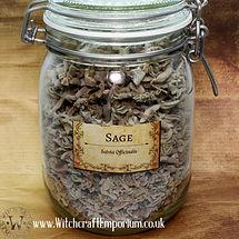 Sage Herb Plant Magic Healing Energy Pag