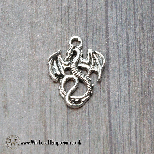 Dragon Silver Charm