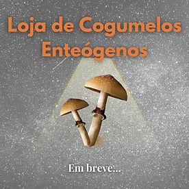 Loja de Cogumelos Enteógenos.jpg