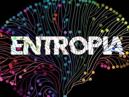 A Entropia como chave para a 4ª Dimensão