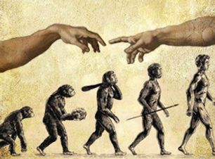 vida humana.jpeg