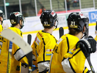 4:1-Erfolg der Bulls bei den Eisbären Regensburg