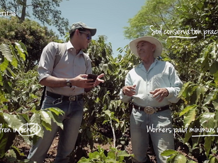 Working with non-profits to end poverty in the coffee sector