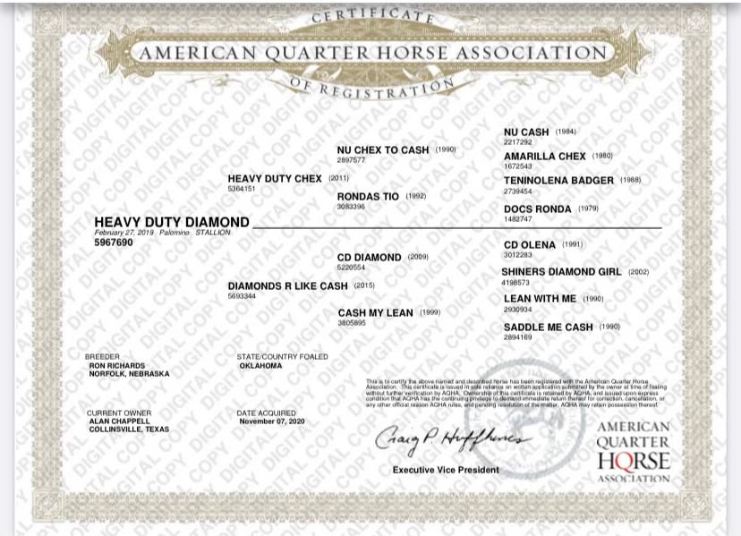 Heavy Duty Diamond - papers.jpg
