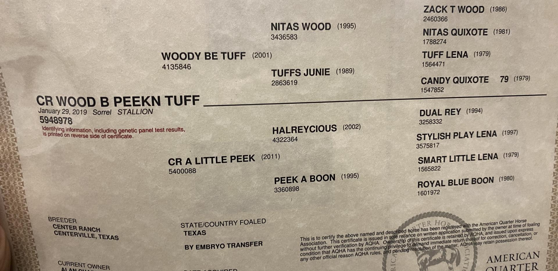CR Wood B Peekn Tuff - papers.HEIC