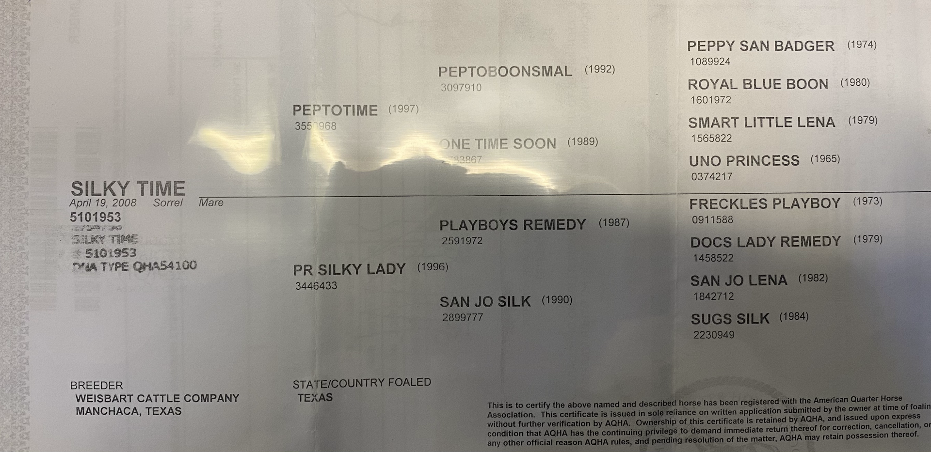 silky time papers.heic