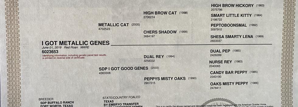 I got metallic genes papers.HEIC