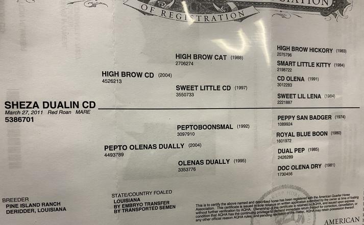 Sheza Dualin CD.heic