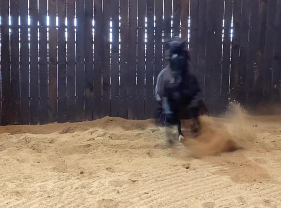 a dark horse - clip.mov