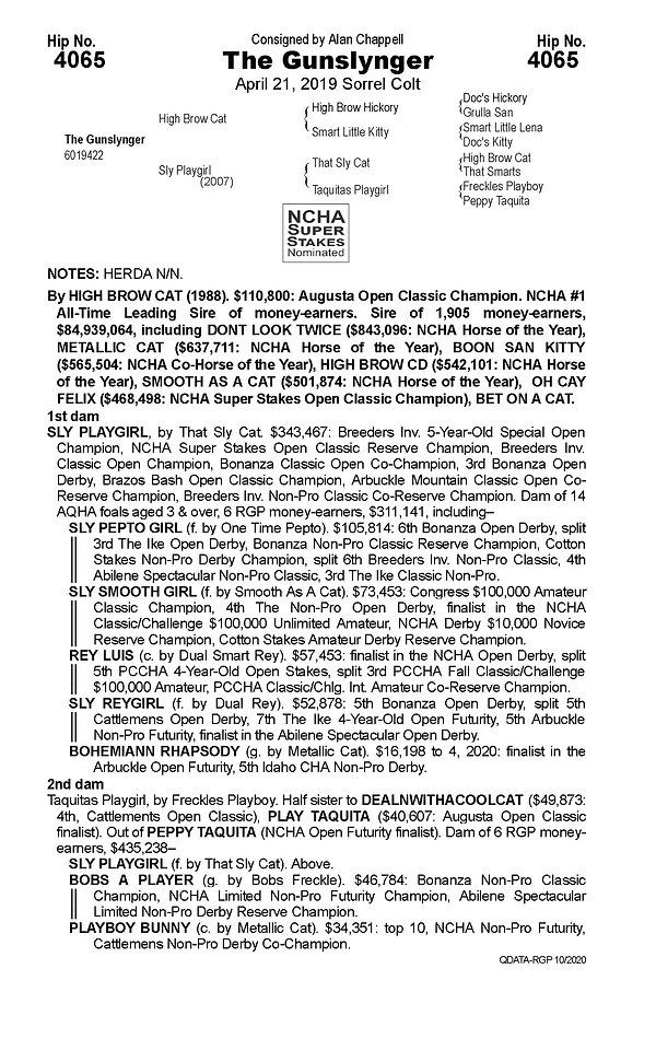 the gunslynger pedigree page.JPG