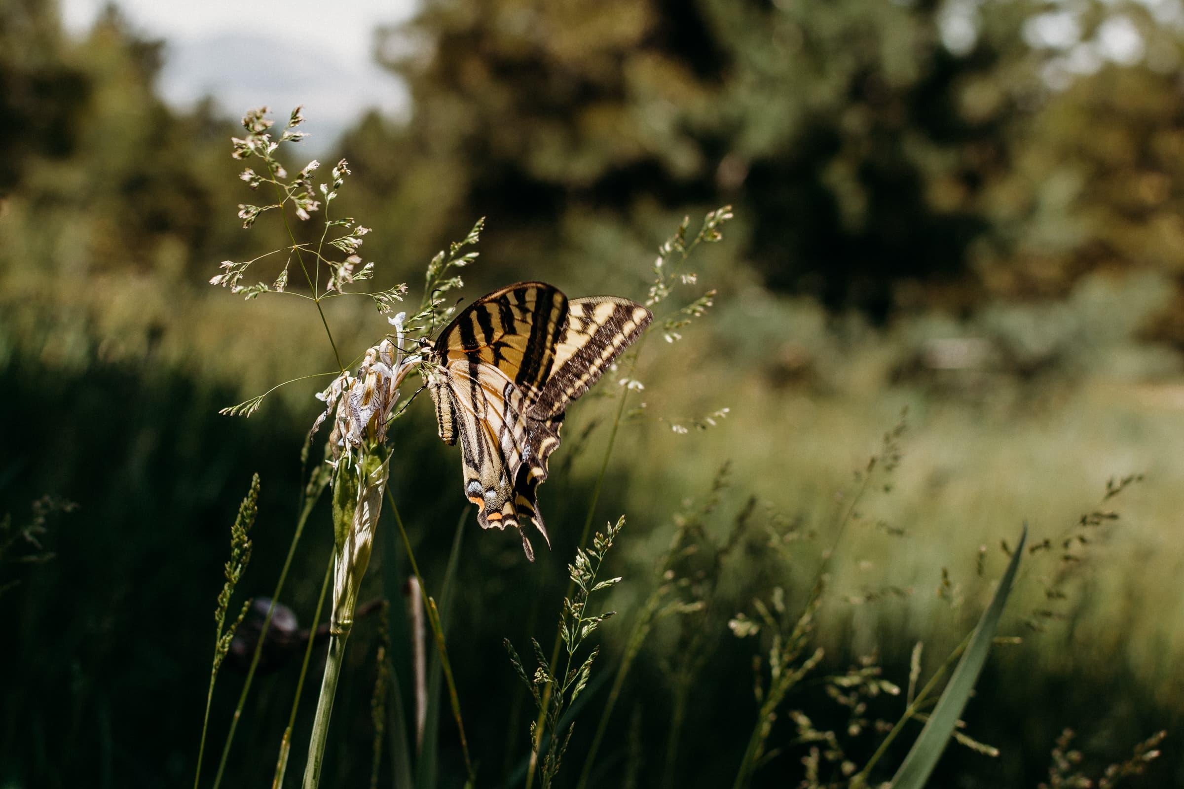 spokane-washington-photography