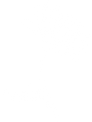 wdp-logo-icon.png