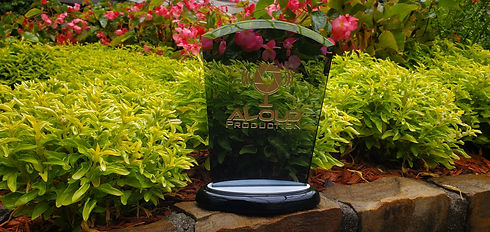 Aloud Production Award