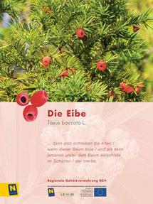 13_Eibe_2.jpg