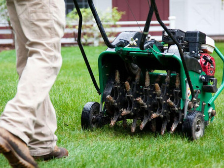 Lawn Aeration and Overseeding: Frequently Asked Questions