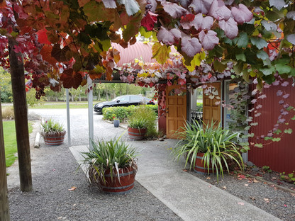 Torless winery North of Christchurch