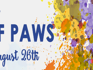 Art of PAWS 2017