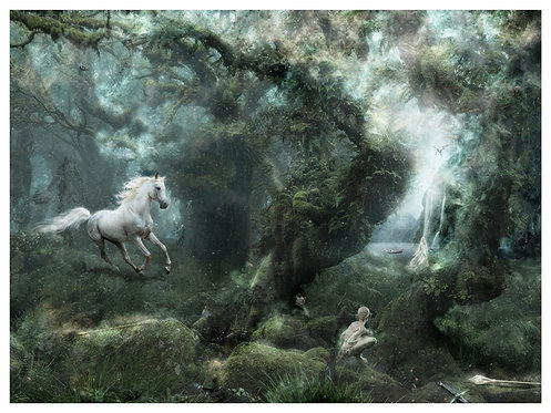 Not all Who Wander Are Lost (Lord Of The Rings) - Mark Davies