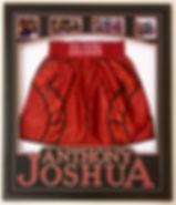 AJ Shorts