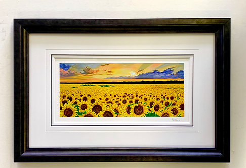 Sunflower - Louise Berrill