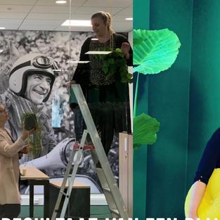 Mireille van Driel - CEO/Founder Livin' ontwerpbureau
