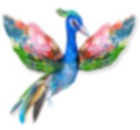 Kleurrijke vogel, toon je ware kleuren en spreid je vleugels