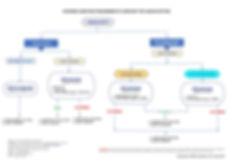 Flowchart on ESR for Labuan Entities.jpg