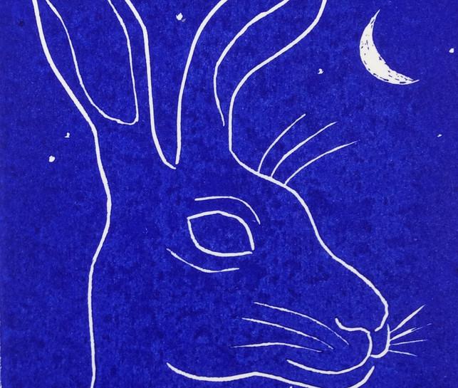Blue Hare