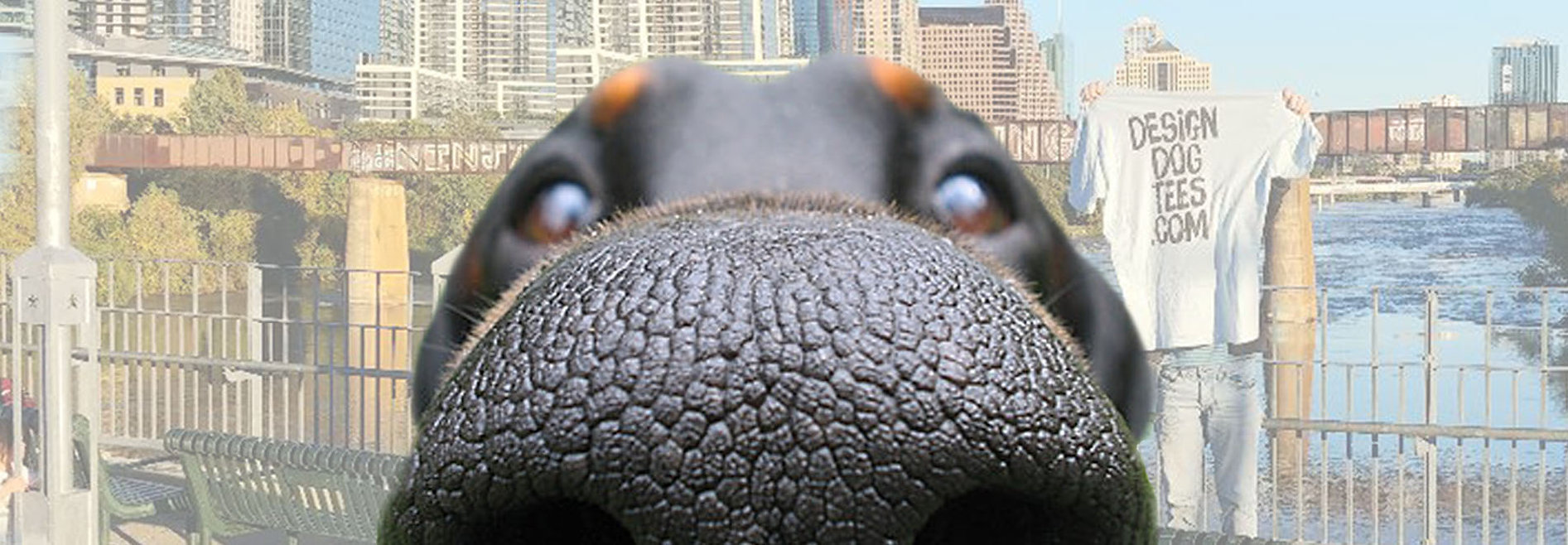 dog nose graphic design banner.jpg