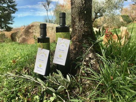 Genuss pur!  Unser Olivenöl könnt ihr ab sofort bestellen!