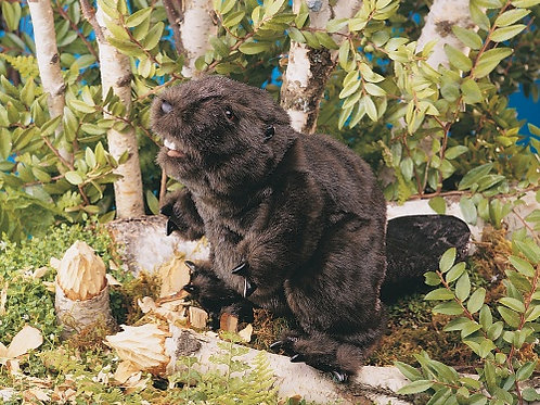 Folkmanis - Beaver Puppet