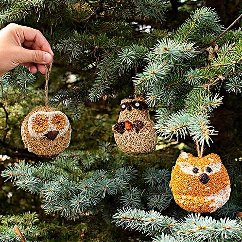 Woodland Friends - Owl, Raccoon and Fox