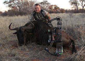Jessy Draves Blue Wildebeest