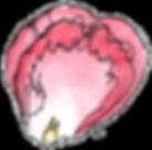 HC-Rose-Petal-300dpi.png