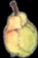 HC-Pear-300dpi.png