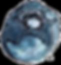 HC-Blueberry-300dpi.png