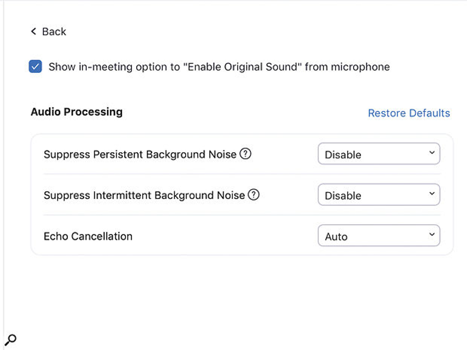 Zoom Audio Settings