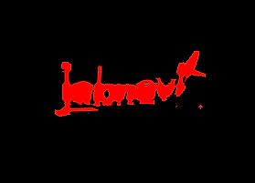 Labnavi Logo_final.png