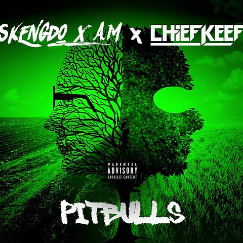 Skengdo x AM ft. Chief Keef - Pitbulls