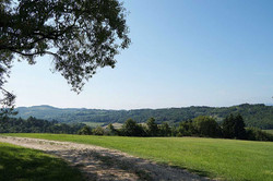 Villa rental in Tuscany with pool
